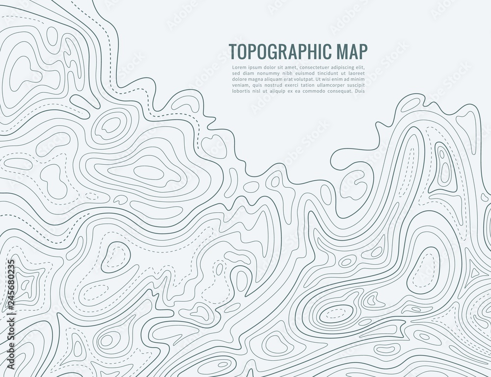 Fototapety, obrazy: Contour line map. Elevation contouring outline cartography texture. Topographical relief map vector background