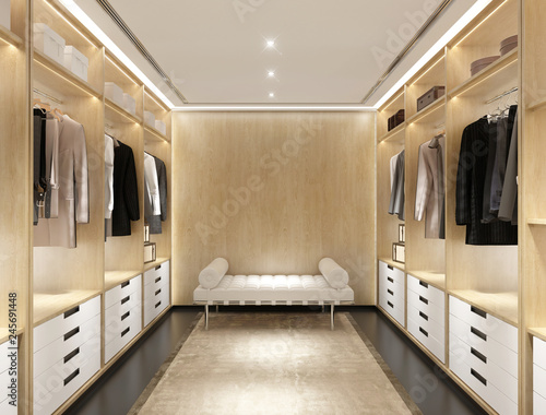 Fotografering Luxury modern light wood dressing room with daybed