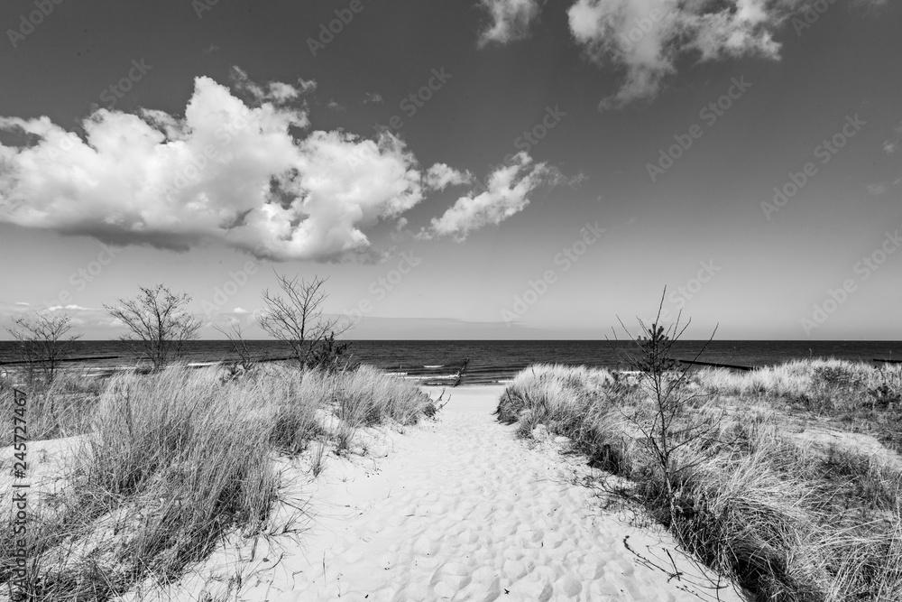 Fototapeta levee with sandy path to beach at baltic sea