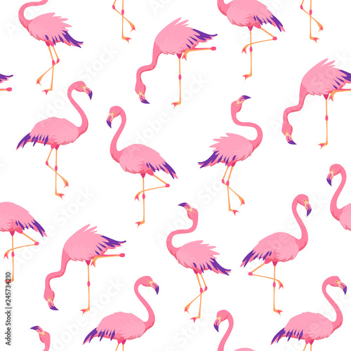 Ingelijste posters Flamingo Pink flamingos pattern. Cute tropical birds, seamless flamingo hawaii texture bird repeat print decor wallpaper
