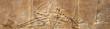 Leinwanddruck Bild - Horizontal banner with Assyrian wall relief