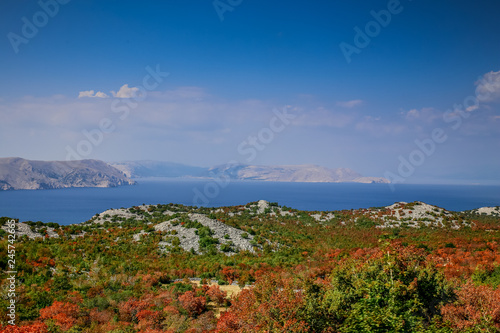 Fotografie, Obraz  Croatian coast in front of the islands Pag, Rab e Krk