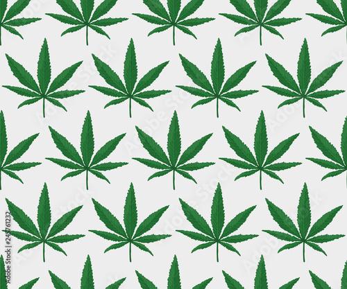 Cannabis Leaf Pattern. Endless Vector Canvas Print