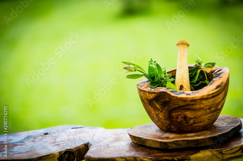 Fresh herbs from the garden in wooden olive mortar against with sunny garden background Canvas Print