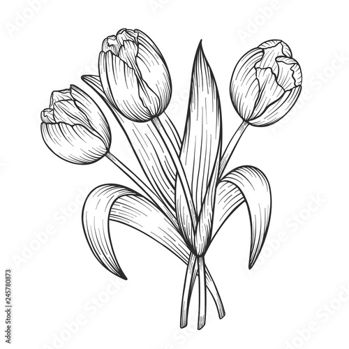 Hand Drawn And Sketch Tulips Flower Bouquet Black And White With Line Art Vector Illustration Floral Botanical Flower Buy This Stock Vector And Explore Similar Vectors At Adobe Stock Adobe Stock