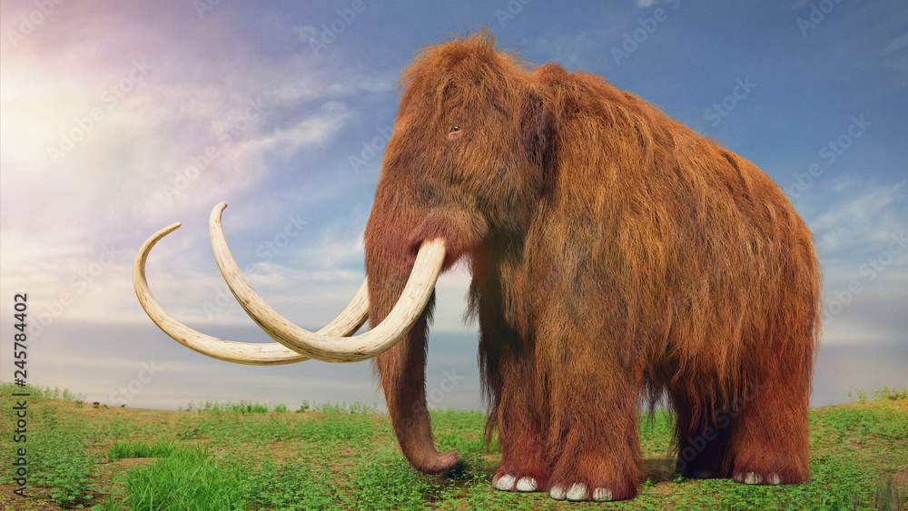 woolly mammoth, prehistoric animal in tundra landscape (3d illustration)