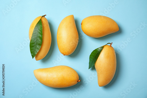Flat lay composition with mango fruits on color background
