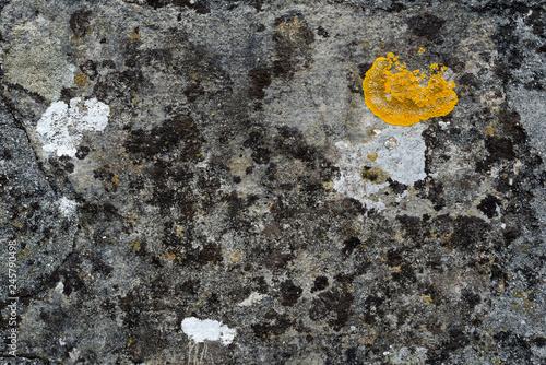 Poster de jardin Cailloux Texture de pierres