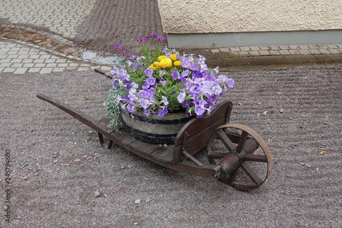 Foto op Plexiglas Schubkarren mit Blumenschmuck