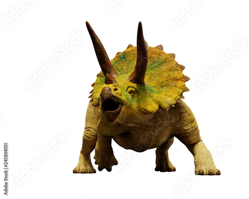 Obraz na plátně  Triceratops horridus dinosaur, extinct prehistoric animal (3d render isolated on