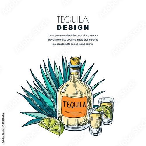 Carta da parati Tequila sketch vector illustration