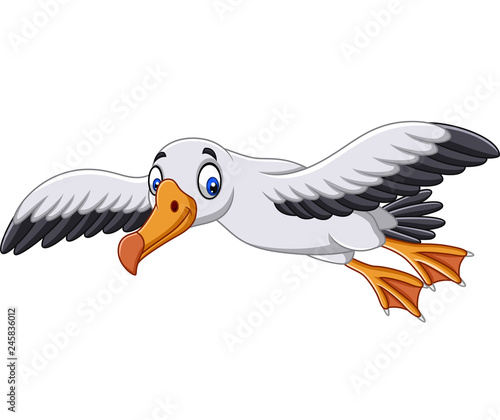 Obraz na plátně Cartoon albatross flying