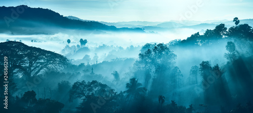 Foto Beautiful Landscape of mountains and rainforest in early morning sun rays and fog in Myanmar