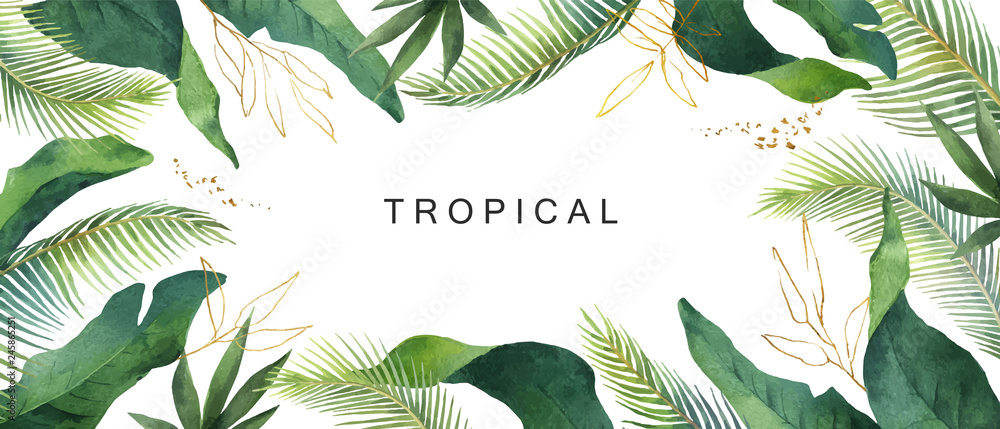 Fototapeta Watercolor vector banner tropical leaves isolated on white background.