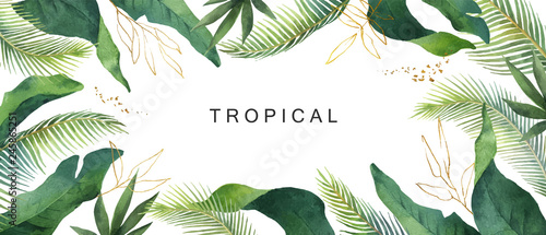 Obraz Watercolor vector banner tropical leaves isolated on white background. - fototapety do salonu