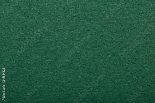 Dark green paper texture #245884825