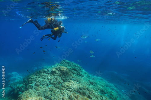 Scuba diving first dive, a man and a child look at fish underwater, Mediterranean sea, France