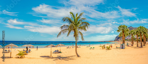 Poster Canary Islands Sandy and beautiful Teresitas beach in Tenerife