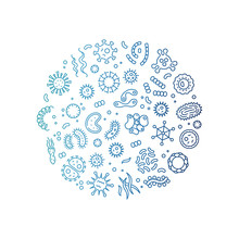 Microbes, Viruses, Bacteria, Microorganism Cells And Primitive Organism Colorful Line Vector Concept. Illustration Of Bacteria And Virus, Microbe Line