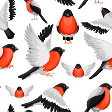 Seamless Pattern. Colorful Icon Set Of Bullfinch Bird. Flat Cartoon Character Design. Bird Icon In Different Side Of View. Winter Bird. Vector Illustration On White Background