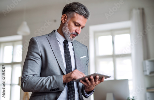 A mature businessman standing in an office, using tablet.