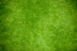 canvas print picture - Green grass, lawn top view