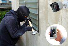 Surveillance Camera Capture An...