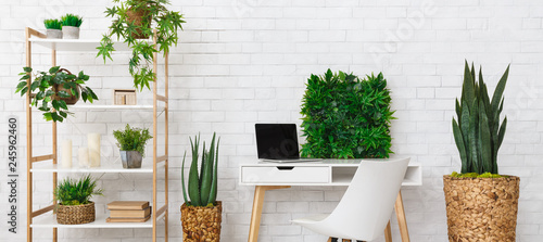Poster Vegetal Office place with various plants on the bookshelf