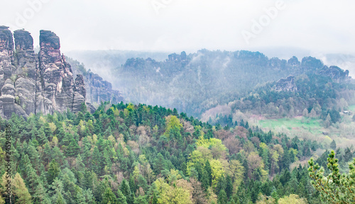 In de dag Olijf Bastai Dresden Germany.Park Saxon Switzerland.The cliffs are located not far from Rathen near the town of Pirne in the south-east of Dresden.The rocks in the fog.Beautiful landscape.Mountains travel.