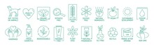Collection Of Linear Symbols O...