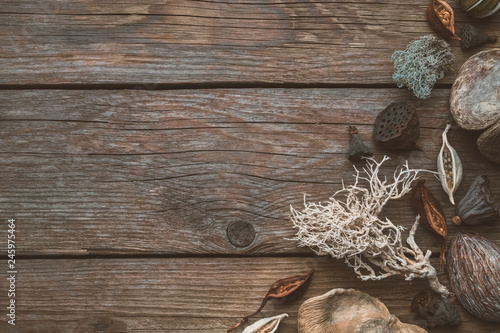 Valokuva  Dried roots, nut shell, coconuts, dry plants, eucalyptus, lotus seeds for floristic design on wooden board
