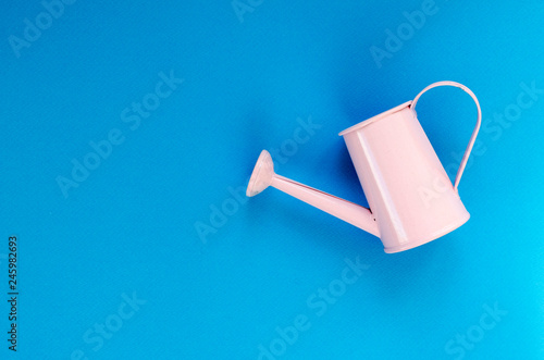 Obraz na płótnie pink small watering can on blue background