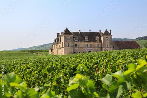Fotografía  Weinbaugebiet Burgund: Weinberge und das berühmte Schloss Clos de Vougeot