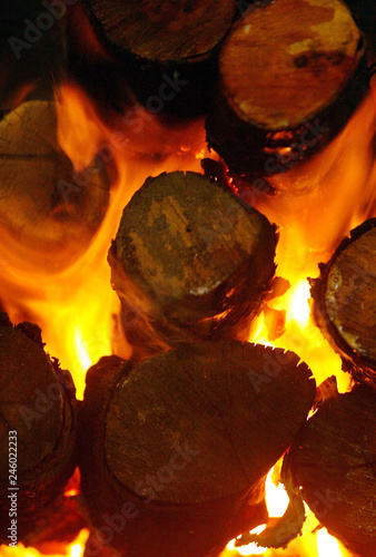 MANGROVE WOOD BURNS IN A CHARCOAL KILN  - Buy this stock
