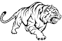 Tiger Vector Drawing, Tiger Drawing Sketch In Full Growth, Crouching Tiger In Black And White, Vector Graphics To Design