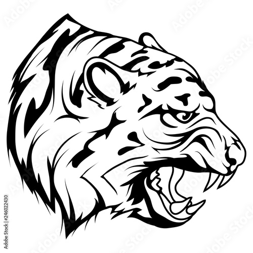 Fototapety, obrazy: tiger head vector drawing, tiger face drawing sketch, tiger head in black and white, vector graphics to design