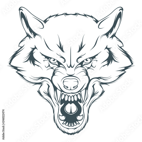 Wolf Face Drawing Line Art