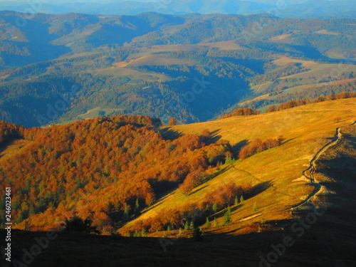 Autumn in the mountains #246023461