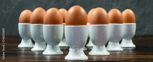 Ten Eggs in Egg Cups on a Table Panorama