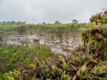 Los Gemelos Volcano, Santa Cruz (Indefatigable) Island, Galapagos, Ecuador