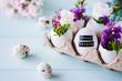 Leinwanddruck Bild - Ostergrußkarte / Osterdekoration mit Ostereiern und kleinen Blumen mit blauem Hintergrund