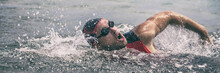 Swim Triathlete Man Swimming F...