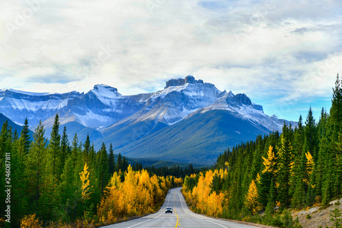 Fotografie, Obraz  The road 93 beautiful Icefield Parkway in Autumn Jasper National park,Canada
