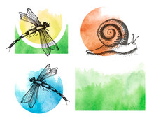 Snail,dragonfly Drawing. Vintage Drawing Of Wildlife. Hand Drawn Isolated Sketch. Engraved Animal For Label, Logo. Watercolor Splash Of Green Paint. Ecological Drawing, Logo, Icon. Watercolor Set