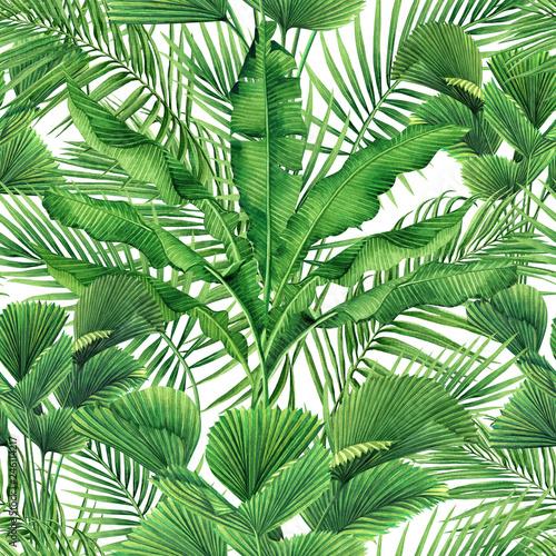 akwarela-malarstwo-kokosowe-bananowe-palmowe