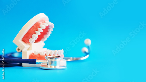 Fotografia, Obraz  White teeth model and stakescope on blue background