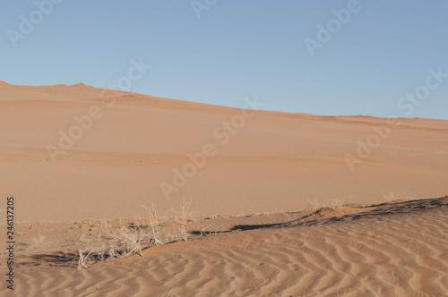 Photo Desierto Namib Naukluft Park