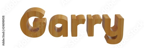 Fotografie, Obraz  garry in 3d wooden name isolated