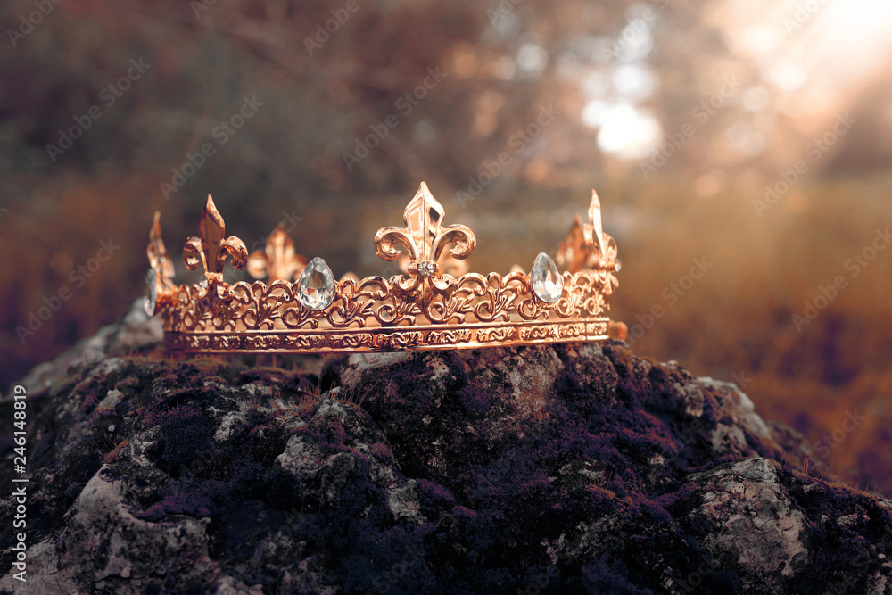 Fototapety, obrazy: mysterious and magical photo of gold king crown over the stone covered with moss in the England woods or field landscape with light flare. Medieval period concept. Toned and filtered.