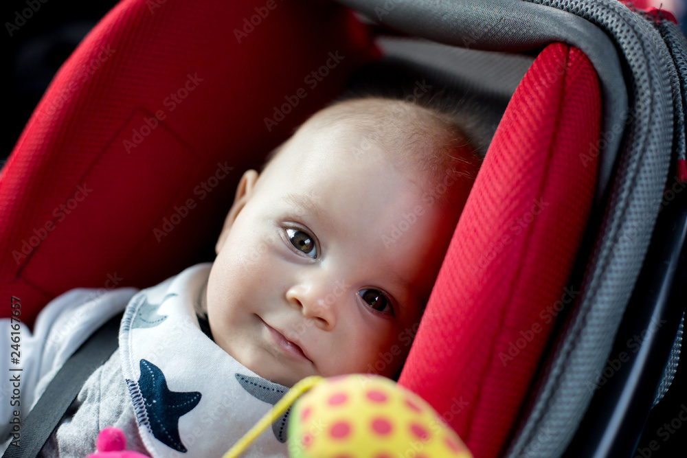 Fototapety, obrazy: Little baby boy and his older brother, traveling in car seats, going on a holiday